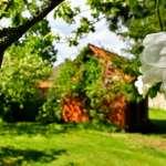 Centrum ogrodnicze Kraków | Wieliczka – stwórz swój wymarzony ogród