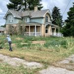 Aeracja czy wertykulacja trawnika?