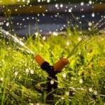 Systemy nawadniania ogrodu – Który będzie dla nas odpowiedni?